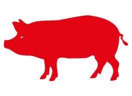 Avviso: campagna di macellazione a domicilio dei suini per il consumo privato 2019-2020