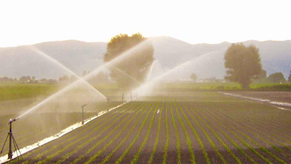 Ordinanza:Sospensione irrigazione dei terreni agricoli nei fine settimana a decorrere dal 27.06.2020